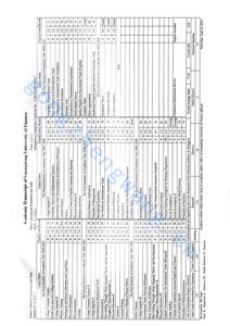 成绩单公证(图5)
