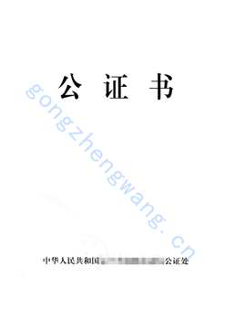 Ds-3053公证(图3)