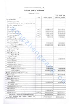 审计报告公证书(图13)