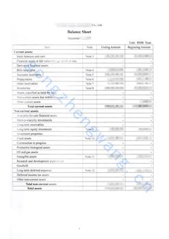 审计报告公证书(图12)